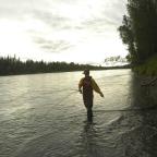 Stocking the Freezer – Alaska 2014